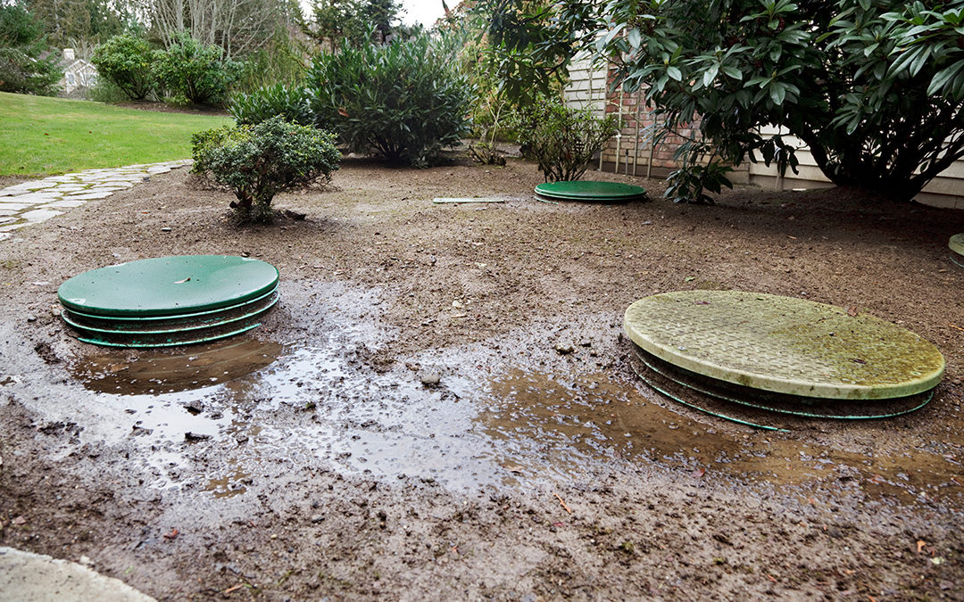 Septic System Malfunction – Warning Signs!